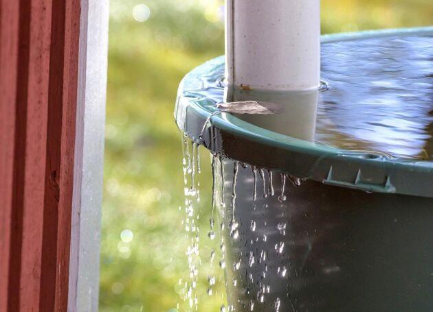 Grundvattennivåerna är i stort sett tillbaka till de normala för årstiden.
