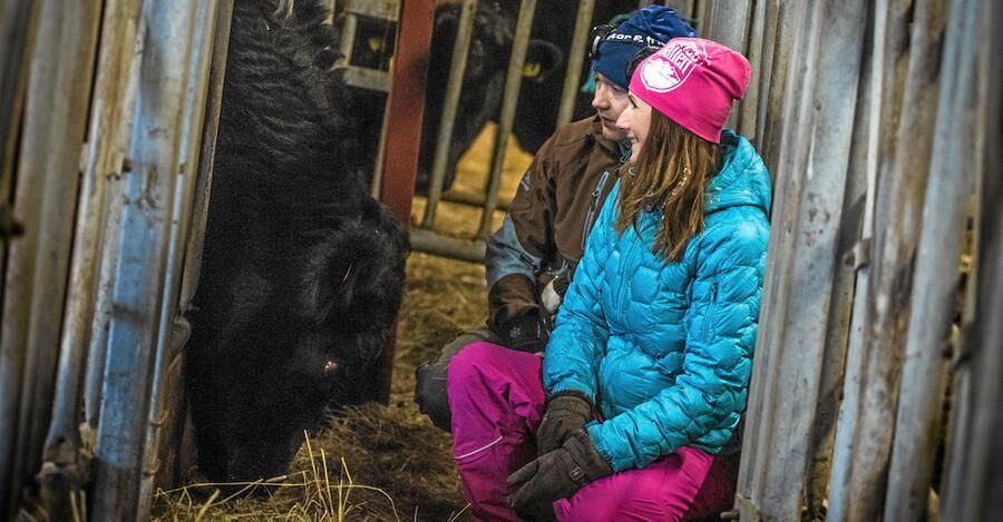 Ellika och Stefan gillar sina djur och tittar till dem ofta.