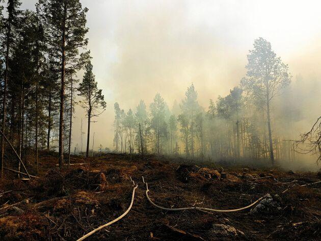 När räddningstjänsten lämnar ett brandområde till markägaren gäller det att stämma av med försäkringsbolaget vad som gäller.