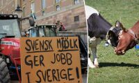 """""""Svenskar vill ha svensk matproduktion"""""""