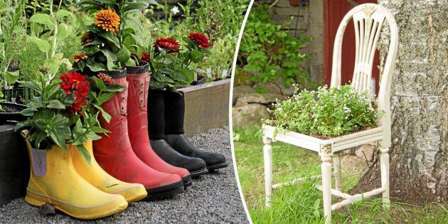 7 annorlunda planteringskärl av återbruk