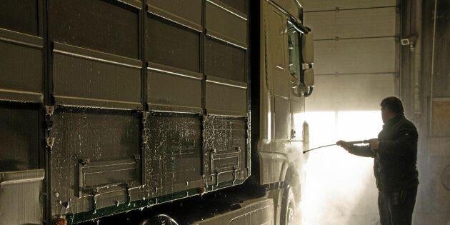 Inget transportfordon slipper undan tvätt vid danska gränsen
