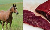 Nytt fusk med hästkött avslöjat