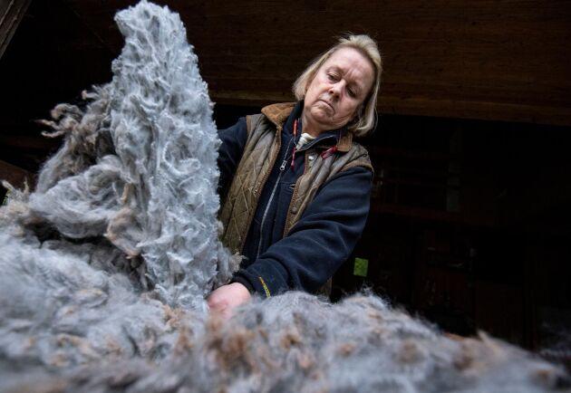 Ann Marie Santesson Gerber med den gråa alpackaullen, som precis har prisats vid en svensk fleece-tillställning.