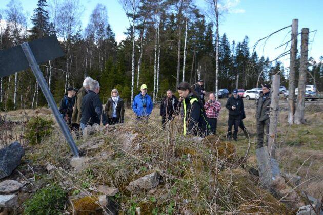 Sentida kulturspår i skogen, som här lämningar efter ett torp, kallas för kulturhistoriska lämningar och omfattas av Skogsvårdslagens § 30.