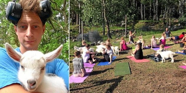 Sötchock! Här får Bonde söker fru-Oscars getter yoga med människor