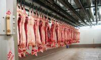 Svenska köttbranschen tar sats för export