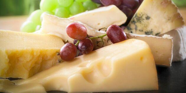 5 hälsoskäl att njuta av ost!