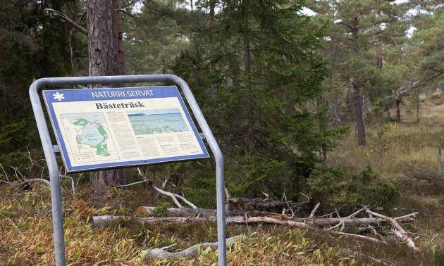 Det blir ingen stenbrytning för Nordkalk i Ojnareskogen på norra Gotland.