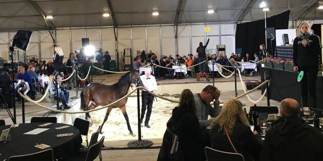400 hästar under klubban