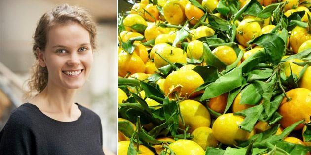 Anna Andersson, Agri Food Economics Centre i Lund menar att certifieringen kan vara extra viktig i utvecklingsländer.