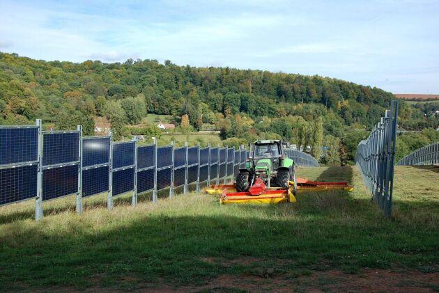 Hur anläggningen på Kärrbo prästgård ska utformas är inte klart, bilden visar ett agrivoltaiskt system utanför tyska Dirmingen.