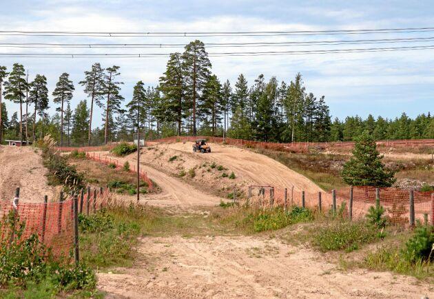 Blommande ängsvädd och öppna sandytor ska locka guldsandbin och silvergökbin till motorcrossbanan utanför Finspång.