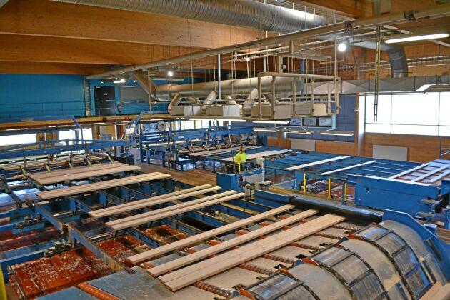 Holmen Braviken och övriga anläggningar inom affärsområdet Skog har gynnats av stigande virkespriser.