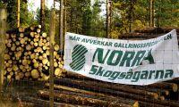 Rekordresultat för Norra – vill dela ut 30 miljoner