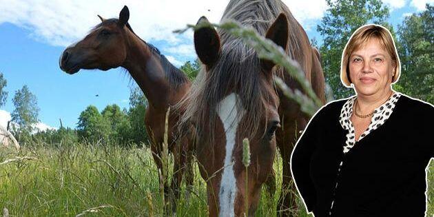 Är det hästens tur att stå i skamvrån?