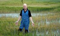 Vattenbristen skapar problem för lantbrukare