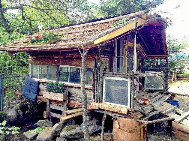 Härligt, originellt och billigt är Eila Viinikainens hembyggda hönshus, gjort av spillvirke och återvunnet material.