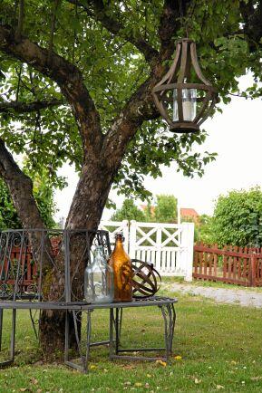 En smidesbänk runt det knotiga gamla äppelträdet känns inbjudande och rofyllt. Ett batteridrivet ljus med timer får ljuskronan att lysa stämningsfullt när mörkret faller.
