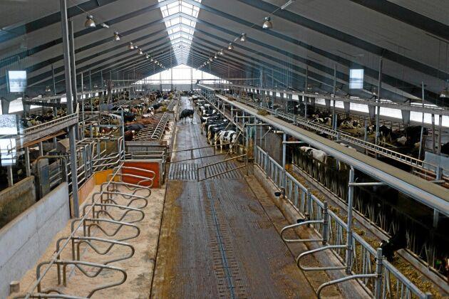Toppmoderna mjölkningsmaskiner och robotar installerades på Ösarps Gård för bara några år sedan.