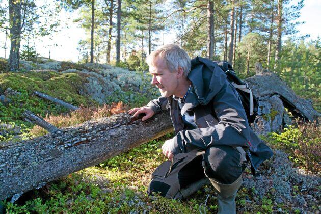 – Arter hamnar inte på rödlistan för att de är ovanliga utan för att de miljöer man kopplar dem till anses minska, säger Gunnar Lindén.