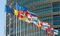 På onsdag röstar EU om skogen