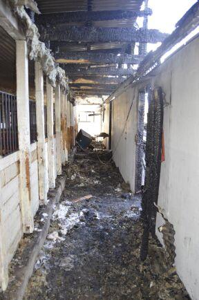 – Vi vet inte varför det började brinna. Vi hade bara ett element på i sadelkammaren, säger Linda Fyhr.