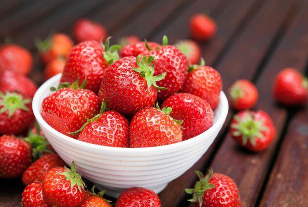 Jordgubbar, kan man äta för många? Nej!