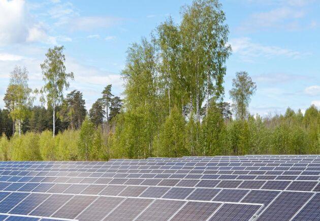 Solel är en felsatsning av staten, skriver Magnus Thorén.