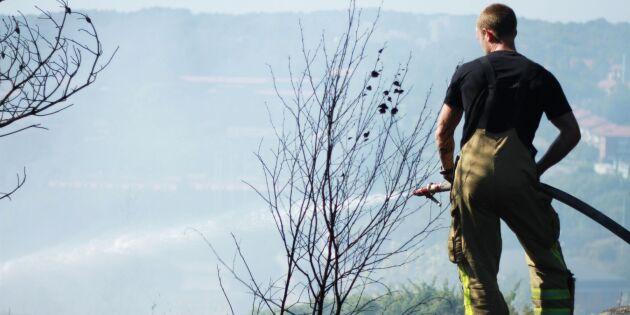 Risk för bränder – så skyddar du din skog