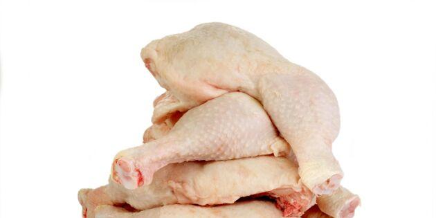 Svårt att spåra kycklingens ursprung