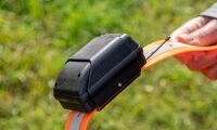 GPS-band håller koll på djuren