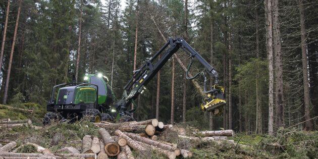 Skogen central i norsk klimatplan