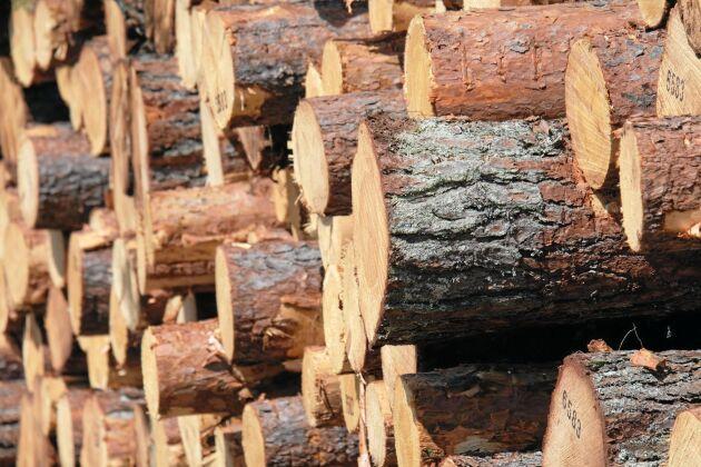 Avverkningen väntas öka i år. Bruttoavverkningen under 2019 beräknas enligt Skogsstyrelsen bli 94 miljoner skogskubikmeter.