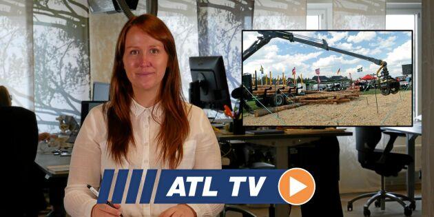 ATL TV: Kronos styr kranspetsen