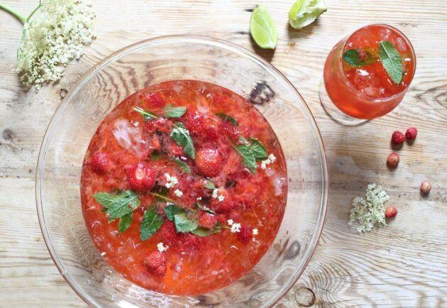 Jordgubbsbål med fläder som passar lika bra som drink. Foto: Katarina Ekeström