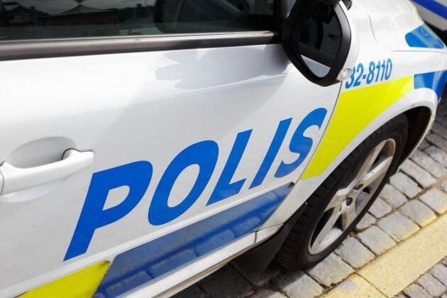 En 45-årig kvinna stångades till döds av kor inne i ett lösdriftsstall i Ljungby kommun.