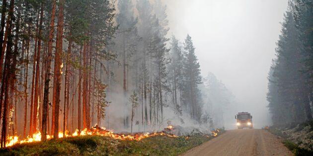 Kraftigt regn över storbranden