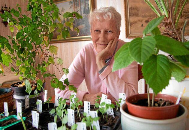 Marianne Eeks trädgård har visats i lands Öppen Trädgård sedan starten för 25 år sedan.