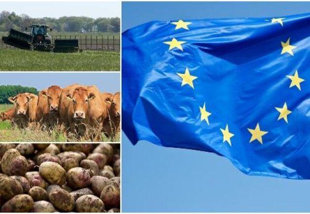 """""""Om vi ska få en bättre jordbrukspolitik måste beslutsprocessen förändras"""", säger ekologen Dagmar Clough vid Lunds Universitet. Arkivbild."""