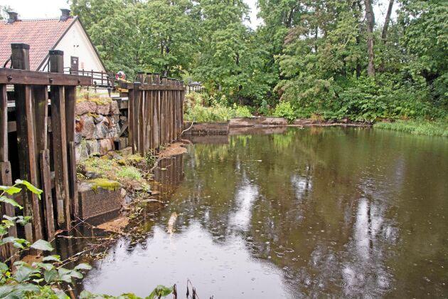 Den månghundraåriga miljön kring Järle kvarndamm är hotad av länsstyrelsen Örebros utrivningsplaner.