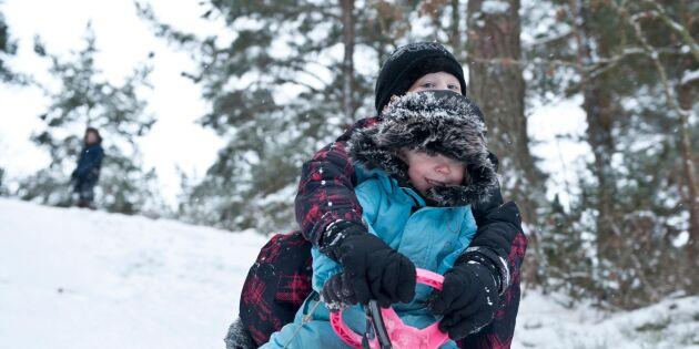 Bob, snowracer eller rattkälke – här är ordet som delar Sverige