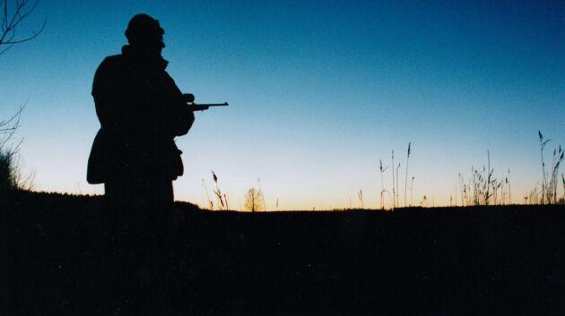 Naturvårdsverket vill att nybildade viltvårdsområdesföreningar ska anpassa sig efter den befintliga älgförvaltningen.