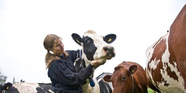 Larmet: Lantbrukares familjer hotas av djurrättsaktivister