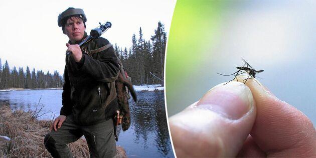 Fiskodlaren Christian vill göra framtidens foder – av insekter