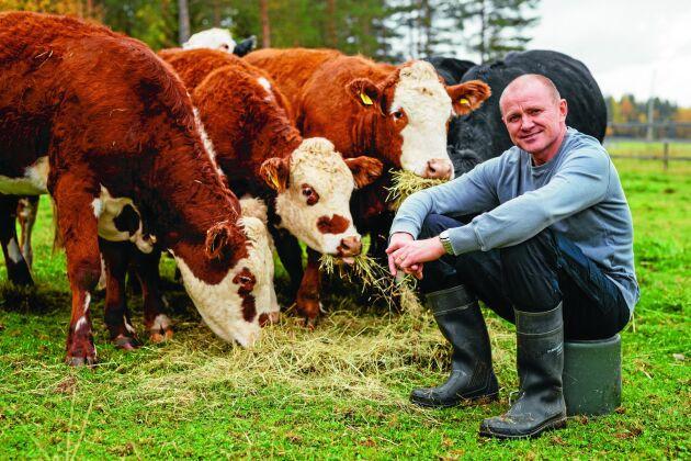 Lantbrukaren Andreas Helgesson är bonde och kock och han vet hur djuren ska skötas om för att köttet ska bli perfekt.
