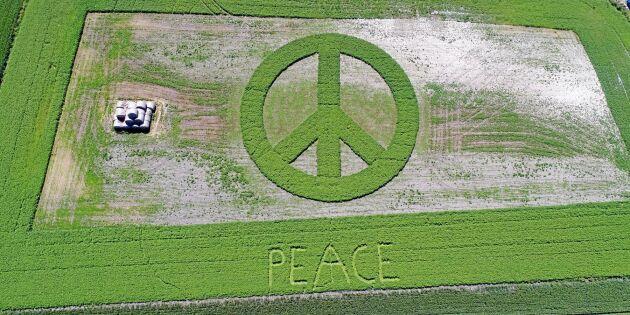 Lantbrukaren som odlar fred på jorden - kolla in mästerverken!