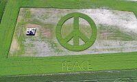 Lantbrukaren som skapar fred på jorden