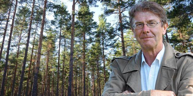Miljömålen i skogen krockar