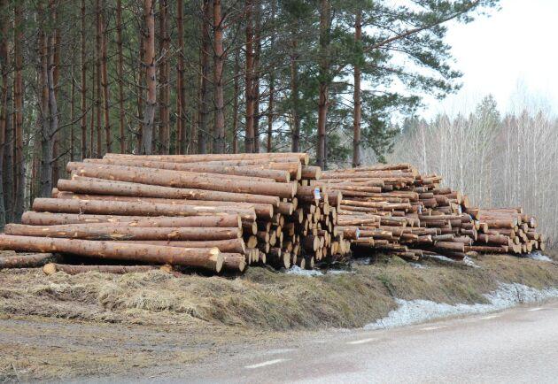 Mellanskog höjer priserna på gran- och barrmassaved, men också på grot.